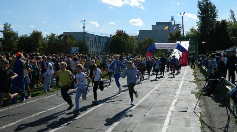 Алатырцы приняли участие в Кроссе нации-2017 13