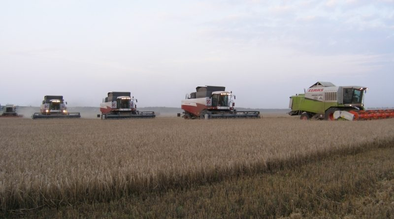 В сельскохозяйственных организациях и крупных КФХ Чувашии уборка зерновых и зернобобовых культур завершена