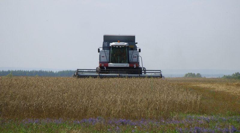 Уборка урожая на полях Чувашии продолжается