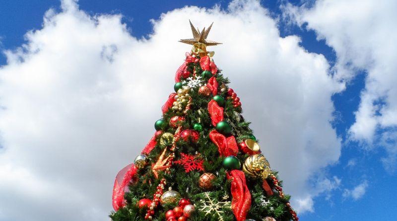 Новогоднюю елку в Саранске посетили школьники Алатырского района