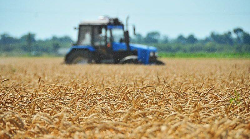 Для поддержки сельскохозяйственных потребительских кооперативов выделено более 55 млн рублей