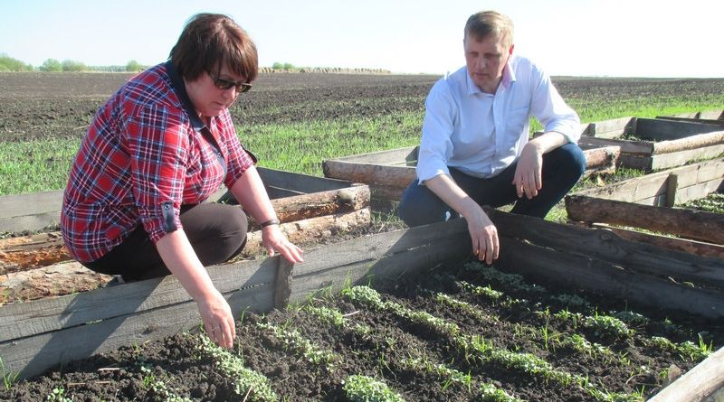 Глава администрации Алатырского района Нина Шпилевая в ходе рабочей поездки  посетила сельхозугодия района