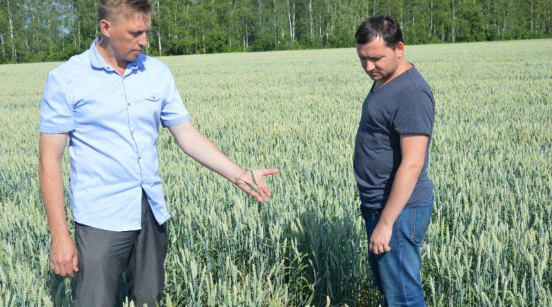 Аграрии алатырского района готовятся к уборочной страде