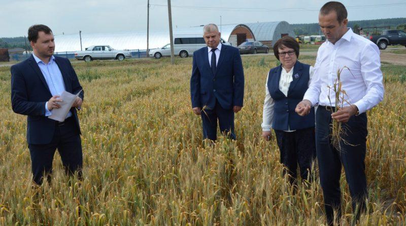 Михаил Игнатьев посетил Алатырский район 3
