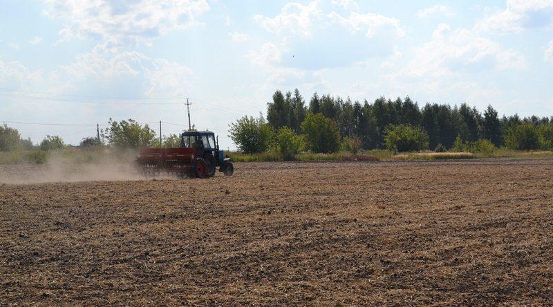 Сельскохозяйственные предприятия Алатырского района приступили к севу озимых культур