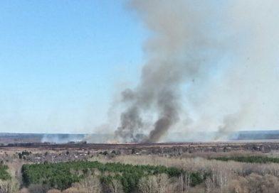 Поджоги травы приводят к трагедиям