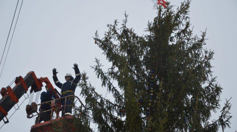 В Алатыре установили главную городскую елку
