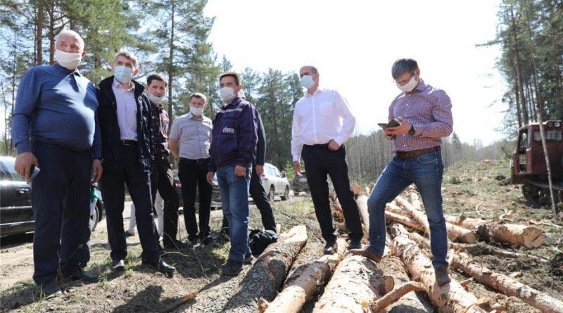 Олег Николаев считает, что велодорожка и пешеходная дорожка в Заволжье должны быть