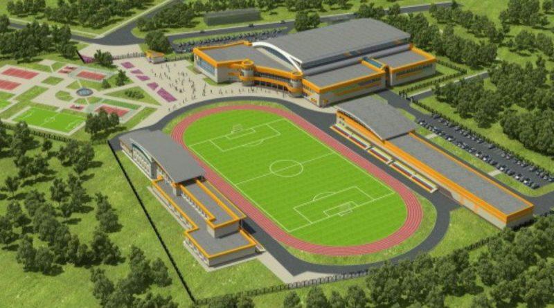 Олег Николаев рассказал о развитии спортивной инфраструктуры в ближайшие пять лет
