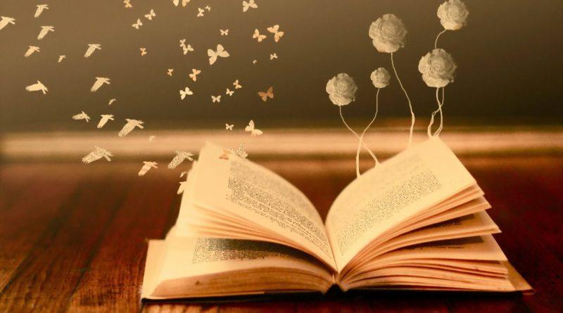 С Федором Нестеровым - о книгах и чтении 1