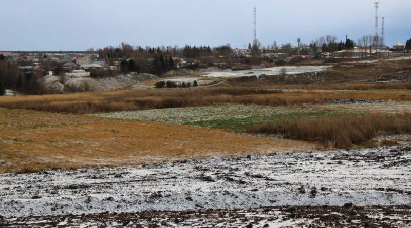 В Ибресинском районе не останется необрабатываемых земель