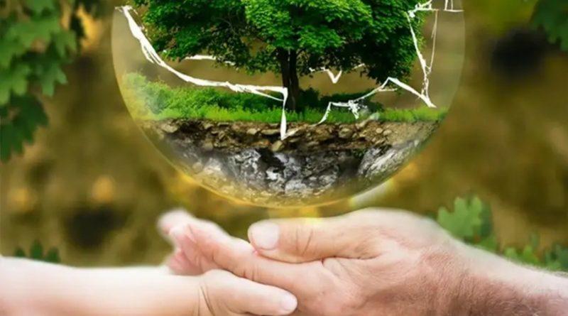 Форум-выставка «Чистая страна». Формирование кадрового потенциала в сфере экологии