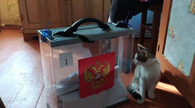 «Всё в рамках закона»: ЦИК Чувашии прокомментировал ситуацию с шумерлинской пожилой избирательницей